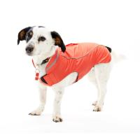 BUSTER Strawberry raincoat, XSS