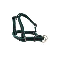 BUSTER Reflective Mesh Step-in Harness, Green/Green, L, 25mm